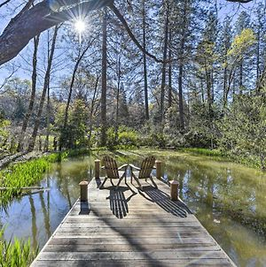 Secluded Cottage On 2 Half Acres With Pond, Dock And Bbq photos Exterior