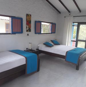 Room In Guest Room - Los Cerezos Rural Accommodation Nature And Well-Being Bungalow photos Exterior