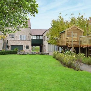Spacious House With Large Garden Beautiful View And Tree House Playground Equipment. photos Exterior
