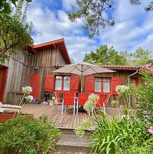Welcoming House In Cap Ferret Close To The Beach, Garden, Terrace, Wifi And Tv photos Exterior