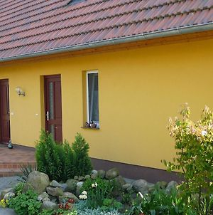 Cheerful Apartment In Wilhelmshof Usedom Near Baltic Sea photos Exterior