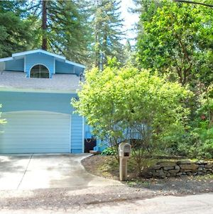 Blue Cherry! Redwoods! Bbq Grill! Fire Table! Ping Pong! Fast Wifi!! Dog Friendly! photos Exterior