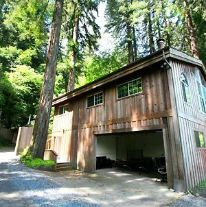 Moon River! Redwoods! Hot Tub! Bbq! Game Room! Close To River! photos Exterior