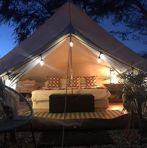 Cabo Oasis Glamping Escape - Alone With Nature In The Mountains Of Caduano photos Exterior