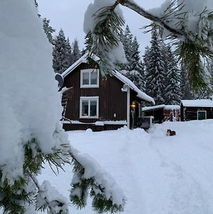 Holiday House In Lapland, Overkalix photos Exterior