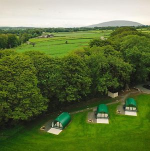 Thornfield Glamping Pods, The Dark Hedges, Ballycastle photos Exterior