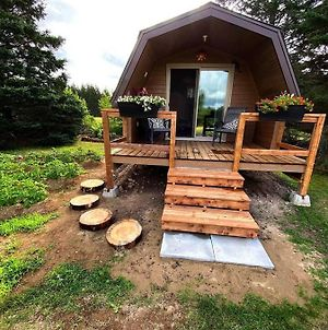 Private Cabin For Your Solo Retreat St-Ignace Nb photos Exterior