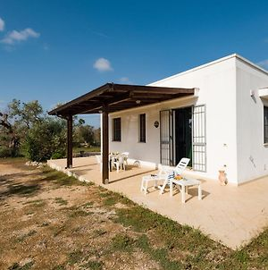Casa Barzo - Surrounded By Olive Trees photos Exterior