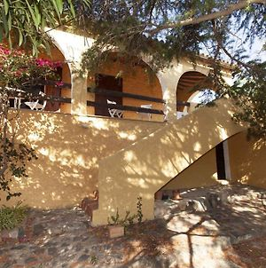 Holiday Home In Torre Delle Stelle 40874 photos Exterior