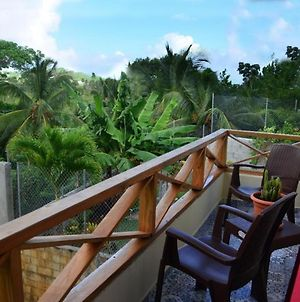 Private Terrace With Sea View - Apartment Number 2 In Villa Coconut photos Exterior