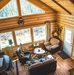 Denali Wild Stay - Bear Cabin With Hot Tub And Free Wifi photos Exterior