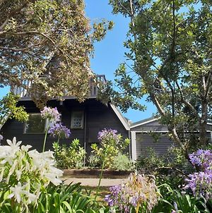Scandi Seaside Retreat - Waikanae Beach Bach photos Exterior