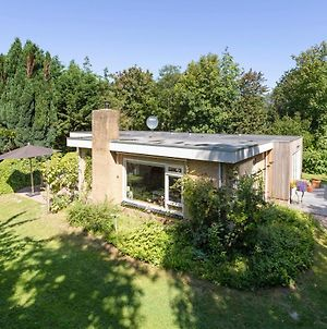 Bungalow Polderbos 7 - Ouddorp Surrounded By Forrest With A Large Garden Very Close To The Beach - Not For Companies photos Exterior