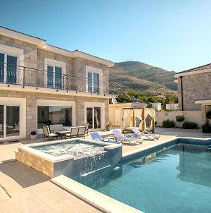 Luxury Villa Miriam With Private Pool And Jet Pool Near Dubrovnik photos Exterior