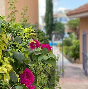 Magic Apartment In The City Of Paphos By The Sea photos Exterior