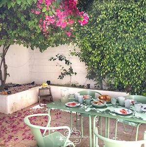 Private Terrace Apartment In Historic Centre 3 By Lisbonne Collection photos Exterior