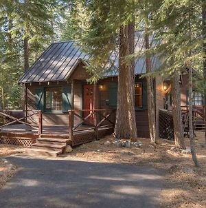 Owl'S Peak By Avantstay - Private Pine Tree Cabin photos Exterior