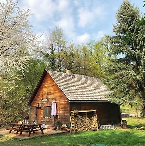 Cosy Wooden Cabin And Bell Tent In Leafy Budapest photos Exterior