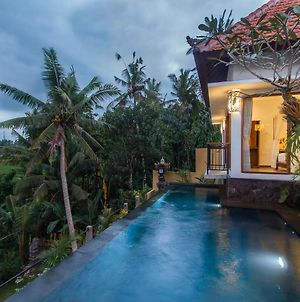 Villa Alam Surya, Mas. Three Bedrooms 2 Private Pools, Surrounded Lush Rice Field View photos Exterior