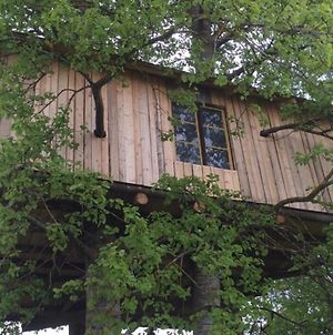 Treehouse Magpies Nest With Forest And River Views photos Exterior