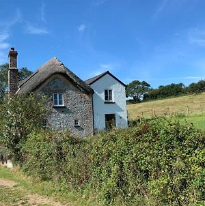 500 Year Old Thatched Cottage New Listing photos Exterior