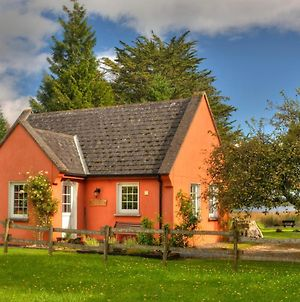 Clonmoylan - Hunters Home Cottage photos Exterior