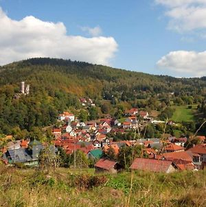 Holiday Home On Rennsteig In Thuringian Forest - Separate Entrance And Garden photos Exterior