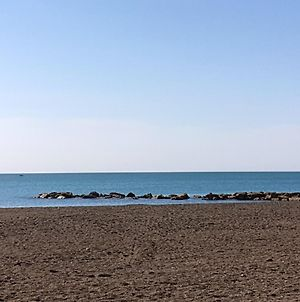 Apartment With 2 Bedrooms In Ladispoli With Enclosed Garden 300 M From The Beach photos Exterior