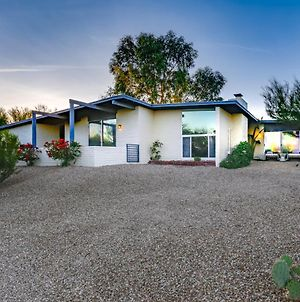 Diving Pool & Hot Tub! Remodeled Mid-Century Luxury photos Exterior