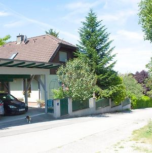 B&B Family Basement Apartment With Continental Breakfast, Free Parking, 5Km From Tulln photos Exterior