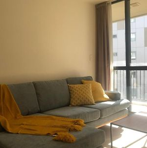 Cute 2 Bed Apt Heart Of K Rd Rooftop Terrace photos Exterior