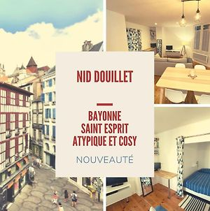 Nice Apartment In The Heart Of Bayonne photos Exterior