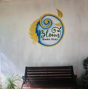 Bloom Home Stay photos Exterior