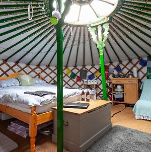Luxury Glamping Yurt-Perfect For Staycations-Pets Welcome-Fantastic Location photos Exterior