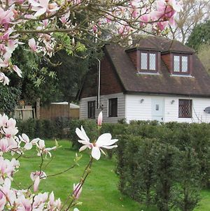 Spacious Holiday Home In Sissinghurst Kent With Garden photos Exterior