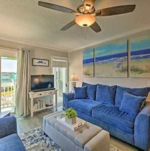 Updated Oceanfront Retreat With Pool, Steps To Beach photos Exterior