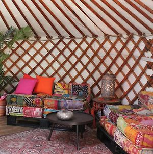Stay In Yurt photos Exterior