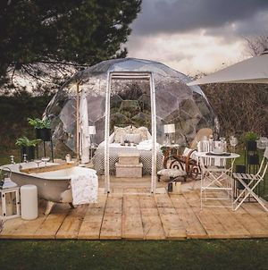Lavender Parc. Sleeping Under The Stars In Your Very Own Luxury Dome photos Exterior