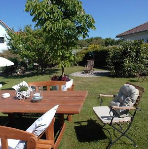 Apartment In Pepelow With Roofed Terrace, Garden, Barbecue photos Room