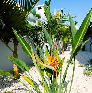 Nissini Blanco, 3 Bedroom Villa With Private Pool, 5 Min To The Beach photos Exterior
