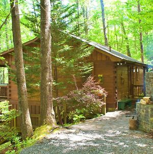 Secluded Sunrise Ridge-10 Min From Blue Ridge, King Beds, Hot Tub, 2 Porches, Fireplace Wood Burning, Mountain View, Cozy photos Exterior