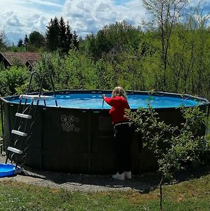 Holiday House With A Swimming Pool Tounj, Karlovac - 17577 photos Exterior