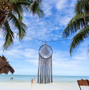 Holbox Dream Beachfront Hotel By Xperience Hotels photos Exterior