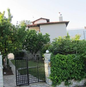 Traditional Apartment Part Of A Detached Villa On A Luxurious Hill Of Thessaloniki Panorama With A Private Garden With Trees ,Also Available For Weddings , Christenings, Family Gatherings And Kid'S Parties - Under 13 photos Exterior