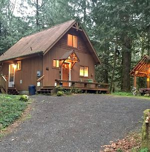 Mt. Baker Lodging - Cabin #67 - Private 2-Story Cabin With A Private Hot Tub! photos Exterior
