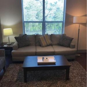 Luxury 1Br Fully Furnished W Wifi North Houston photos Exterior