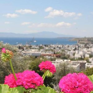 Bodrum Centre Apartment With Sea View And Large Terrace photos Exterior