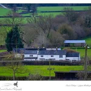Cosy Quirky Cottage photos Exterior