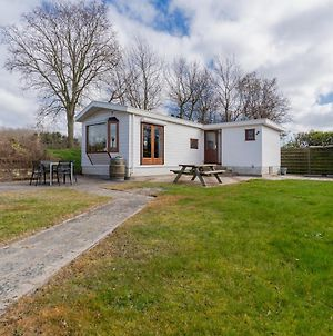 Chalet 41 - Haayse Bos Ouddorp - Not For Companies - In The Middle Of Nature Near The Beach photos Exterior