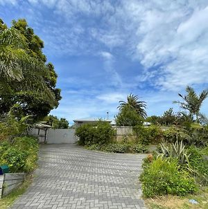 Palm And Fruit Tree Haven, With Spacious Outdoor Areas, In Central Mount. photos Exterior